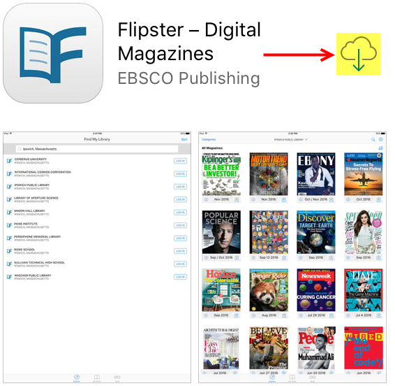 flipsterdownload